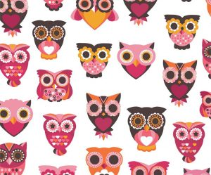 Go Optics Cute Owl Print Microfibre Glasses Cloth 18cm x 15cm
